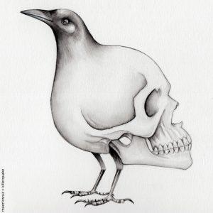 Muertos cuervo